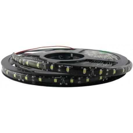 TAŚMA LED(LT) 6lm 12V 24W 300LED/5M 3528 B.ZIMNY 6000K 120° IP65 1m P.CZARNY