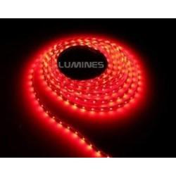 TAŚMA LED(MAX) 6lm 12V 24W 300LED/5M 3528 CZERWONA 120° IP20 1m P.BIAŁY