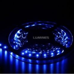 TAŚMA LED(MAX) 6lm 12V 24W 300LED/5M 3528 NIEBIESKA 120° IP20 1m P.BIAŁY
