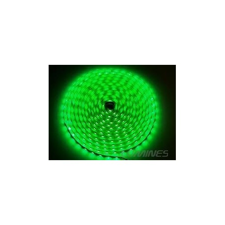 TAŚMA LED(MAX) 6lm 12V 24W 300LED/5M 3528 ZIELONA 120° IP54 1m P.BIAŁY