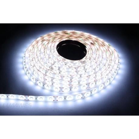 TAŚMA LED(MAX) 6lm 12V 48W 600LED/5M 3528 B.ZIMNY 6000K 120° IP54 1m P.BIAŁY